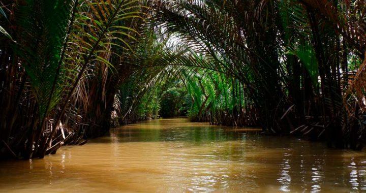 mekong-delta-travel-mekong-river-tour-ho-chi-minh-city-vietnam-0002-720x380